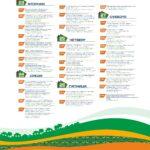 Программа Шукшинских дней на Алтае